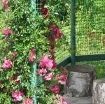 Садовые решетки